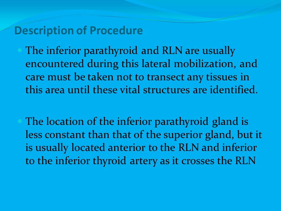 Description of Procedure The inferior parathyroid and RLN are usually encountered during this lateral mobilization, and care must be taken not to tran