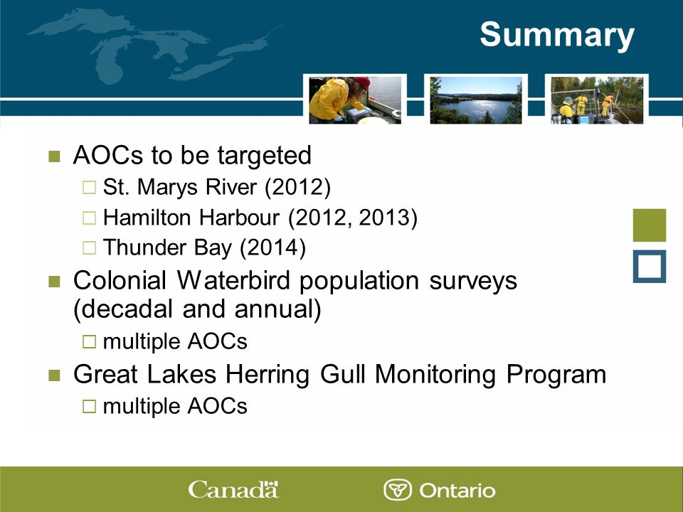 Summary AOCs to be targeted  St.