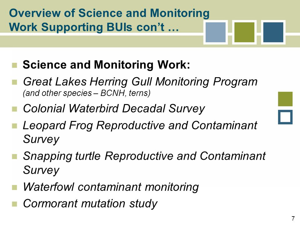8 Assessed contaminants, reproduction of colonial waterbirds at Thunder Bay, St Mary's River, Detroit River, Spanish River Assessed contaminants, reproduction of black crowned night herons at Detroit River Assessed embryonic development, incidence of intersex and deformities, hatching success of leopard frogs at St Clair, Detroit River Assessed contaminants, embryonic development, hatching success of snapping turtles at St.
