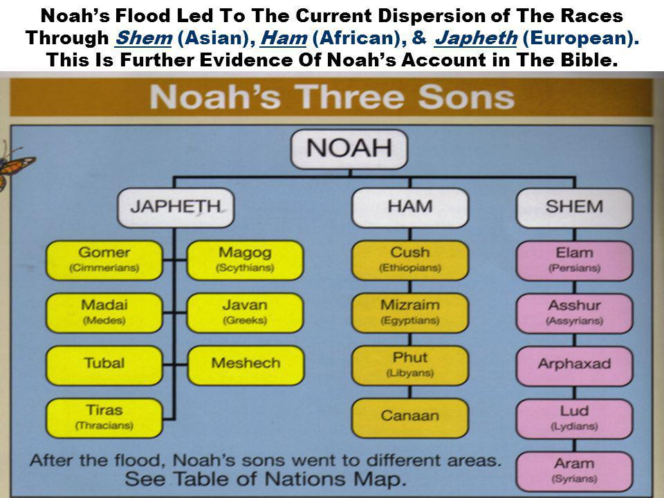 27 Noah's Flood Led To The Current Dispersion of The Races Through Shem (Asian), Ham (African), & Japheth (European).