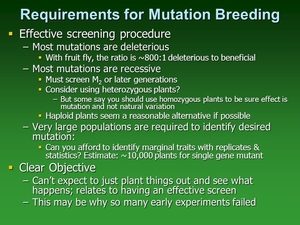 Requirements for Mutation Breeding  Effective screening procedure –Most mutations are deleterious  With fruit fly, the ratio is ~800:1 deleterious t
