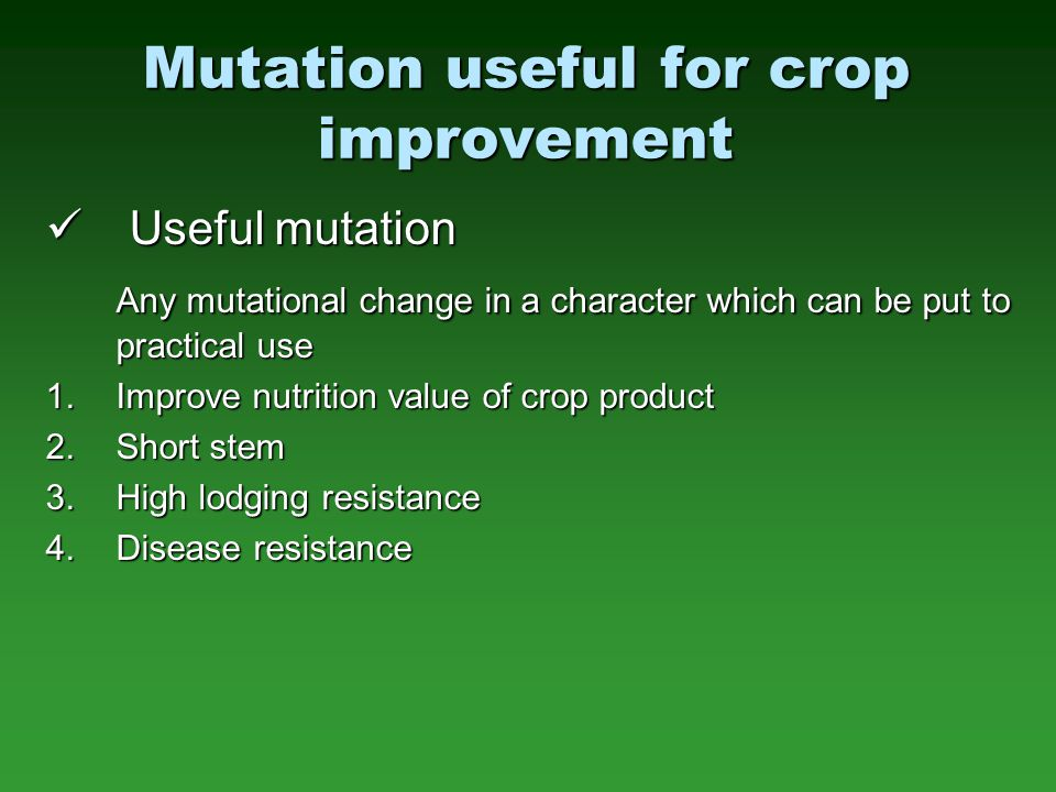 Mutation useful for crop improvement Useful mutation Useful mutation Any mutational change in a character which can be put to practical use 1.Improve