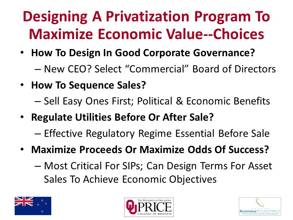 Designing A Privatization Program To Maximize Economic Value--Choices How To Design In Good Corporate Governance.
