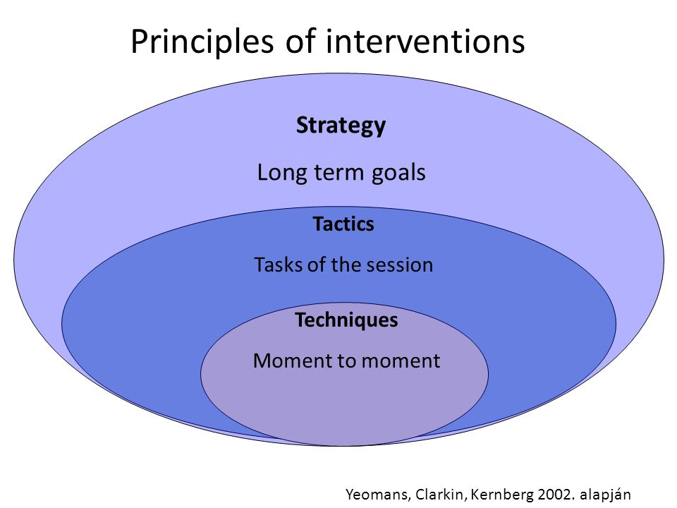 Strategy Long term goals Tactics Tasks of the session Techniques Moment to moment Yeomans, Clarkin, Kernberg 2002.