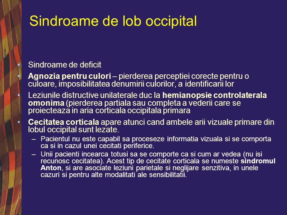 Sindroame de lob occipital Leziunile ariilor 18 si 19 din emisferul dominant duc la agnozie vizuala pentru obiecte (acestea pot fi recunoscute prin intermediul altor simturi); de obicei este insotita de agnozie verbala si hemianopie omonima.