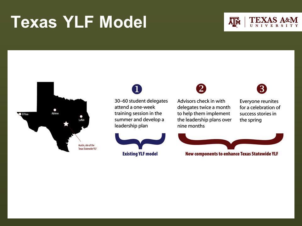Texas YLF Model