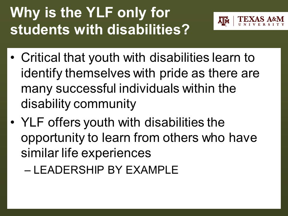 Why is the YLF only for students with disabilities.