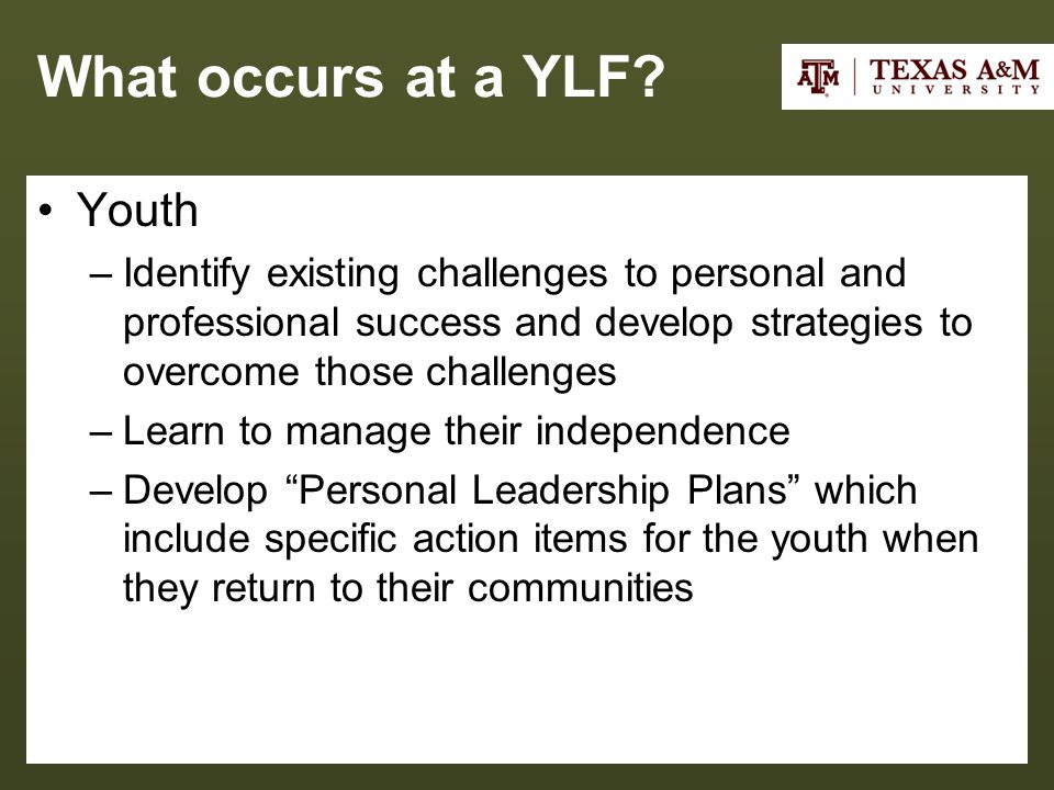 What occurs at a YLF.