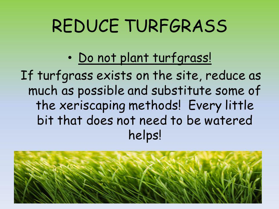 REDUCE TURFGRASS Do not plant turfgrass.