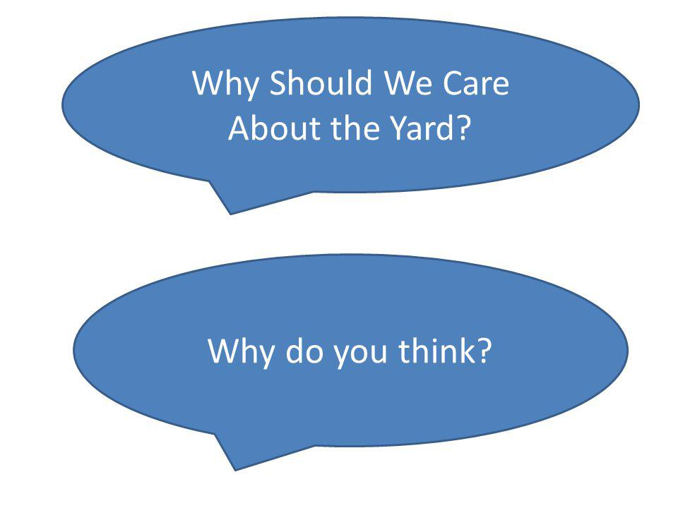 Why Should We Care About the Yard Why do you think