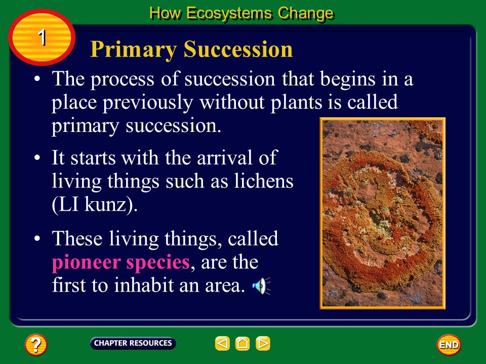 1 1 Question 3 A community of plants that is relatively stable and undisturbed has reached an end stage of succession and is known as a _______.