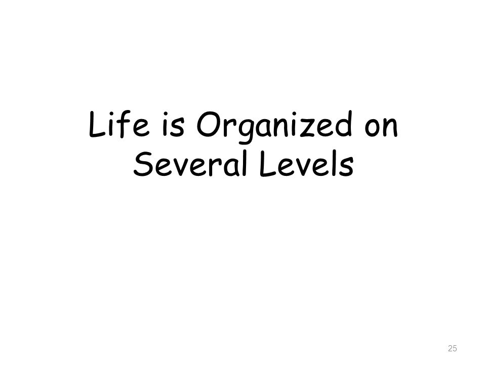 Life is Organized on Several Levels 25