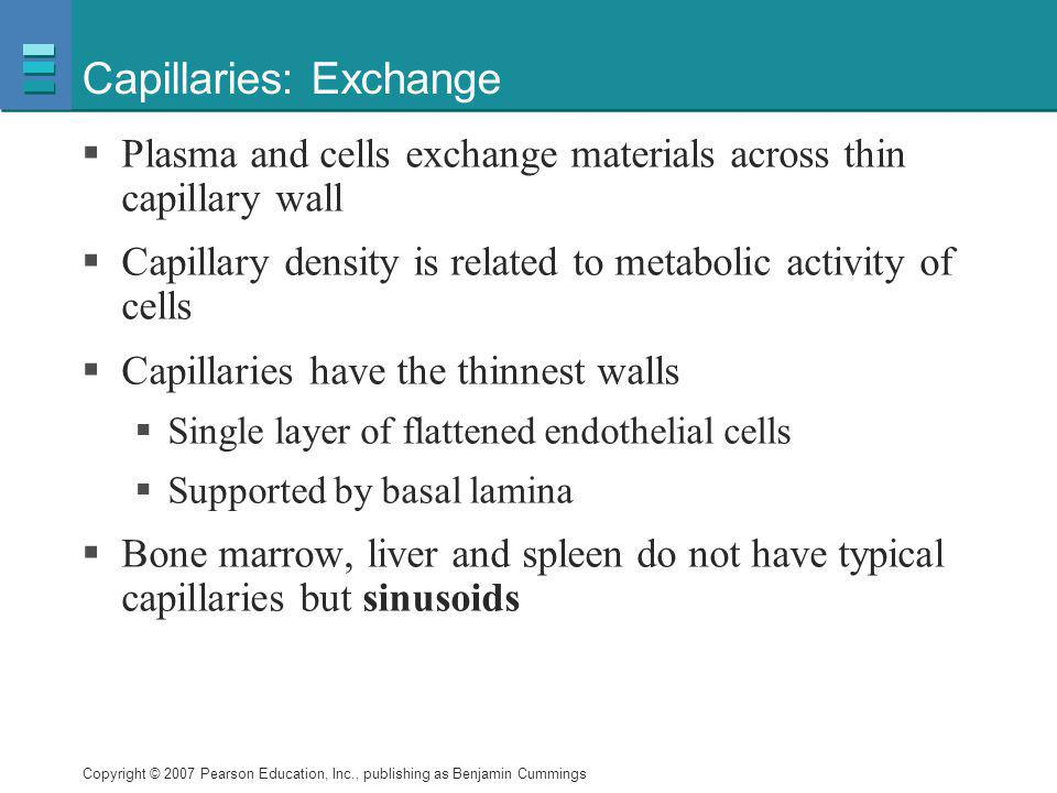 Copyright © 2007 Pearson Education, Inc., publishing as Benjamin Cummings Capillaries: Exchange  Plasma and cells exchange materials across thin capi