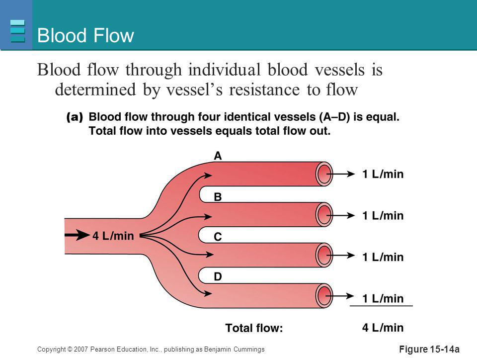 Copyright © 2007 Pearson Education, Inc., publishing as Benjamin Cummings Figure 15-14b Blood Flow Blood flow through individual blood vessels is determined by vessel's resistance to flow Flow  1/resistance