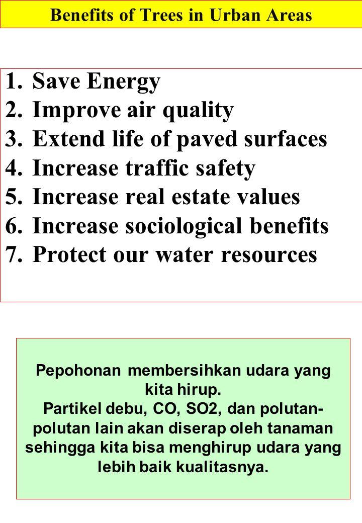 All water is part of this cycle Pepohonan Meningkatkan kualitas air tanah.