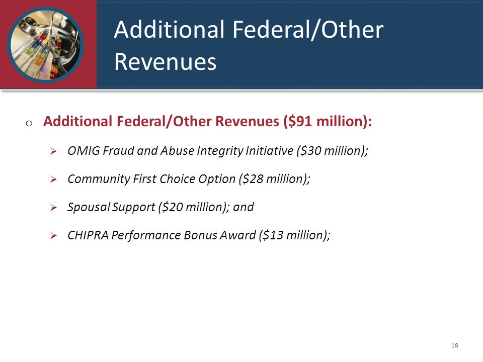Additional Federal/Other Revenues o Additional Federal/Other Revenues ($91 million):  OMIG Fraud and Abuse Integrity Initiative ($30 million);  Community First Choice Option ($28 million);  Spousal Support ($20 million); and  CHIPRA Performance Bonus Award ($13 million); 18