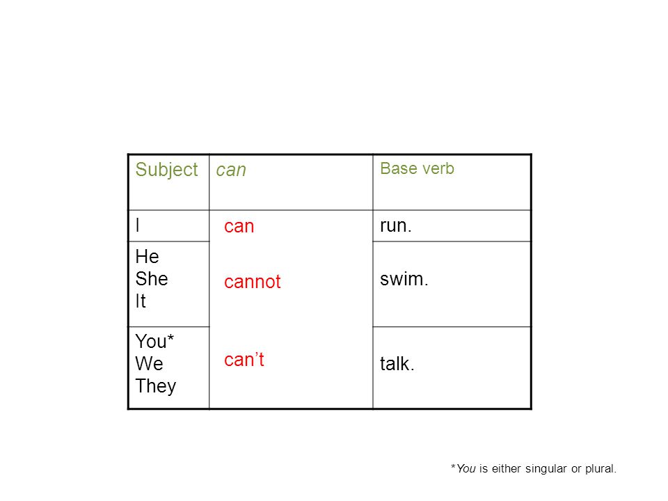 Positive/Negative can Statements Subjectcan Base verb Irun.