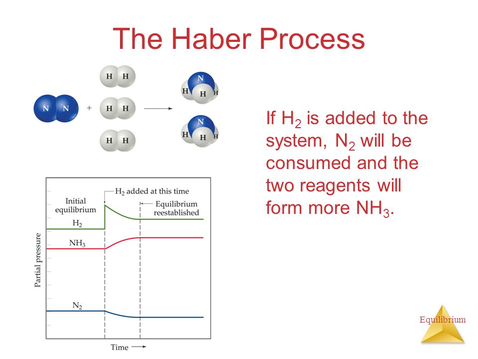 Equilibrium The Haber Process If H 2 is added to the system, N 2 will be consumed and the two reagents will form more NH 3.