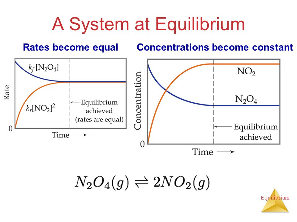Equilibrium Depicting Equilibrium In a system at equilibrium, both the forward and reverse reactions are running simultaneously.