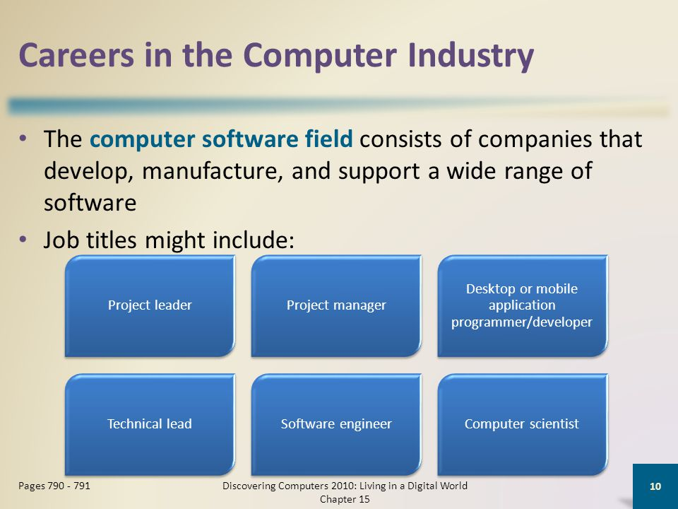 Careers in the Computer Industry The computer software field consists of companies that develop, manufacture, and support a wide range of software Job titles might include: Discovering Computers 2010: Living in a Digital World Chapter 15 10 Pages 790 - 791 Project leaderProject manager Desktop or mobile application programmer/developer Technical leadSoftware engineerComputer scientist