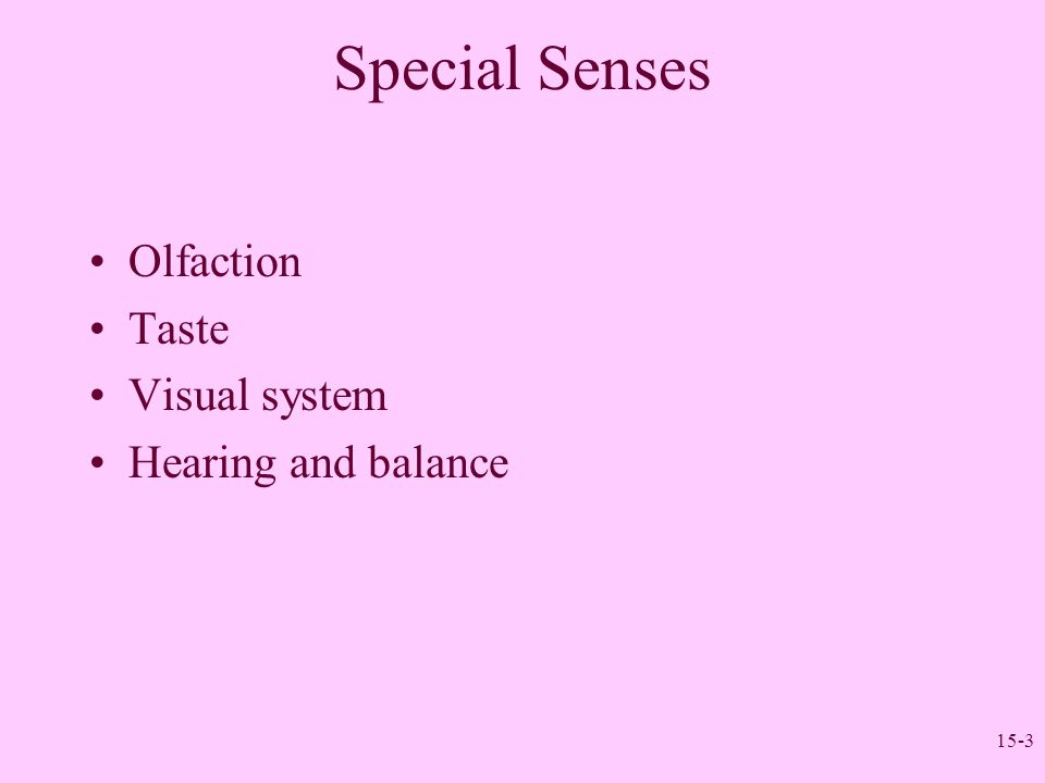15-3 Special Senses Olfaction Taste Visual system Hearing and balance