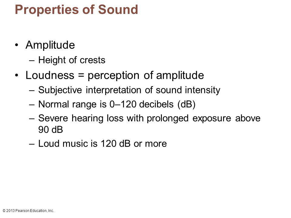 © 2013 Pearson Education, Inc. Properties of Sound Amplitude –Height of crests Loudness = perception of amplitude –Subjective interpretation of sound