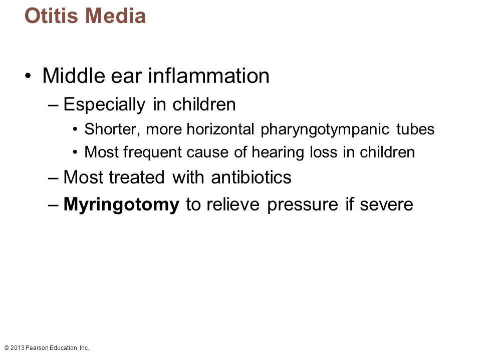 © 2013 Pearson Education, Inc. Otitis Media Middle ear inflammation –Especially in children Shorter, more horizontal pharyngotympanic tubes Most frequ