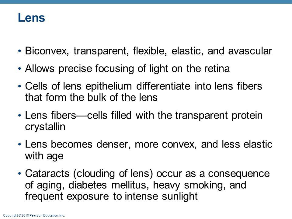 Copyright © 2010 Pearson Education, Inc. Lens Biconvex, transparent, flexible, elastic, and avascular Allows precise focusing of light on the retina C