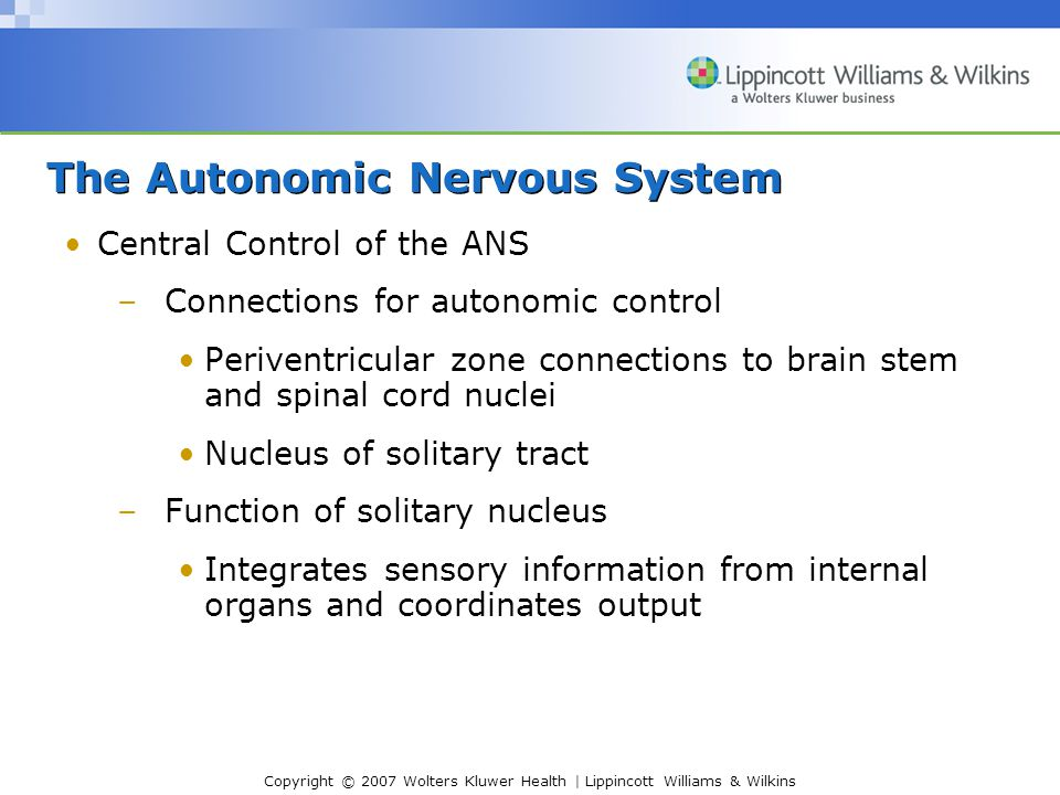 Copyright © 2007 Wolters Kluwer Health | Lippincott Williams & Wilkins Central Control of the ANS –Connections for autonomic control Periventricular zone connections to brain stem and spinal cord nuclei Nucleus of solitary tract –Function of solitary nucleus Integrates sensory information from internal organs and coordinates output The Autonomic Nervous System