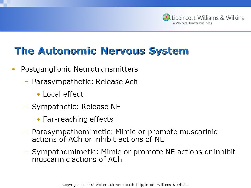 Copyright © 2007 Wolters Kluwer Health | Lippincott Williams & Wilkins Postganglionic Neurotransmitters –Parasympathetic: Release Ach Local effect –Sympathetic: Release NE Far-reaching effects –Parasympathomimetic: Mimic or promote muscarinic actions of ACh or inhibit actions of NE –Sympathomimetic: Mimic or promote NE actions or inhibit muscarinic actions of ACh The Autonomic Nervous System