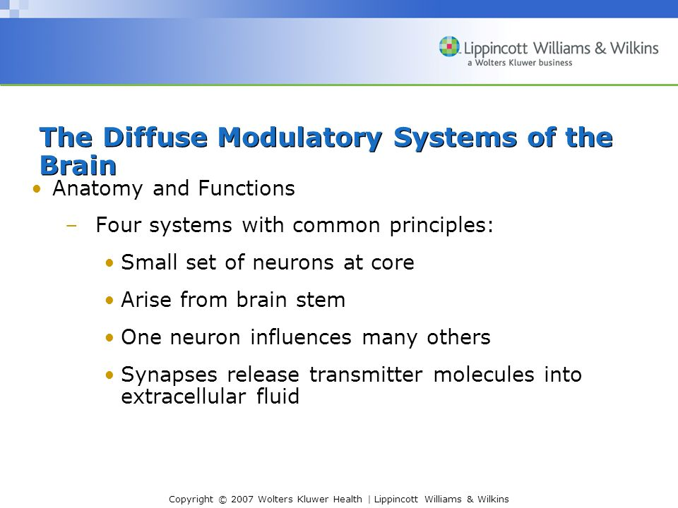 Copyright © 2007 Wolters Kluwer Health | Lippincott Williams & Wilkins Anatomy and Functions –Four systems with common principles: Small set of neurons at core Arise from brain stem One neuron influences many others Synapses release transmitter molecules into extracellular fluid The Diffuse Modulatory Systems of the Brain