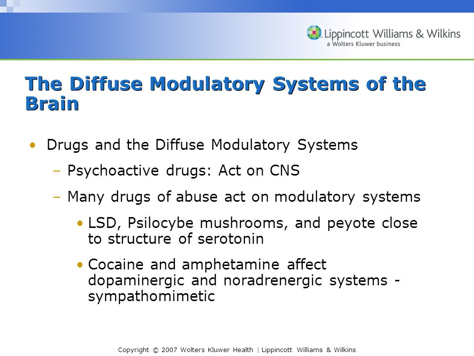 Copyright © 2007 Wolters Kluwer Health | Lippincott Williams & Wilkins Drugs and the Diffuse Modulatory Systems –Psychoactive drugs: Act on CNS –Many drugs of abuse act on modulatory systems LSD, Psilocybe mushrooms, and peyote close to structure of serotonin Cocaine and amphetamine affect dopaminergic and noradrenergic systems - sympathomimetic The Diffuse Modulatory Systems of the Brain