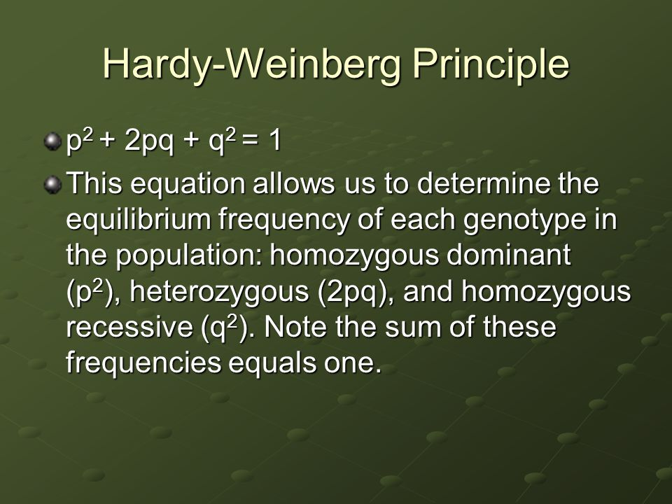 Hardy-Weinberg Principle p 2 + 2pq + q 2 = 1 This equation allows us to determine the equilibrium frequency of each genotype in the population: homozy