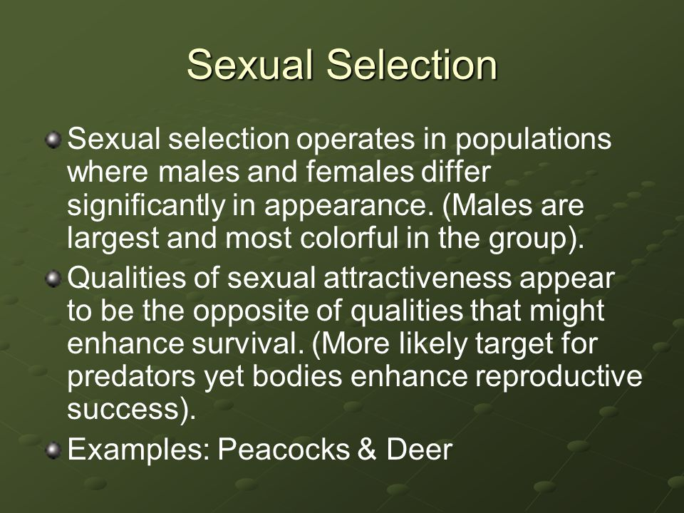 Sexual Selection Sexual selection operates in populations where males and females differ significantly in appearance. (Males are largest and most colo