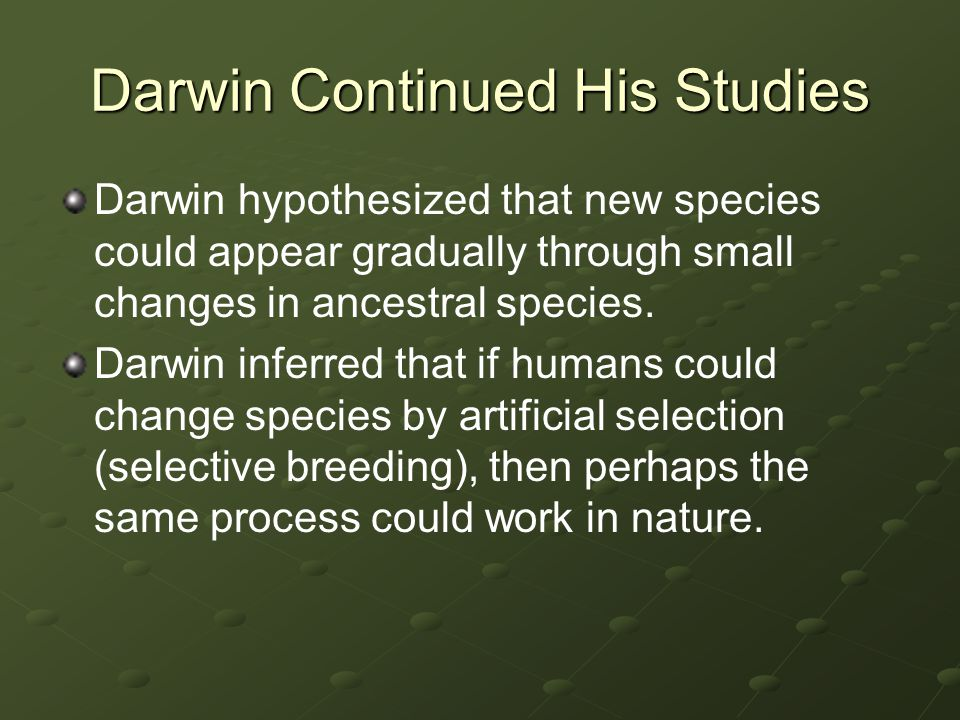 Darwin Continued His Studies Darwin hypothesized that new species could appear gradually through small changes in ancestral species. Darwin inferred t