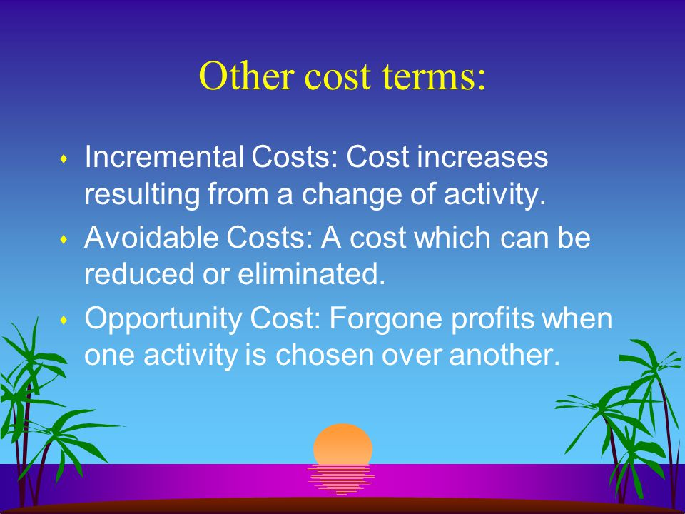 Other cost terms: s Incremental Costs: Cost increases resulting from a change of activity.