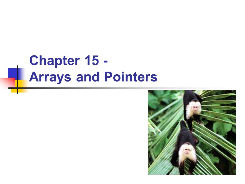BYU CS/ECEn 124Arrays and Pointers22 Pointers int *ptr1; int *ptr2; int i = 4; int j; ptr1 = &i; ptr2 = &j; // What will these print.