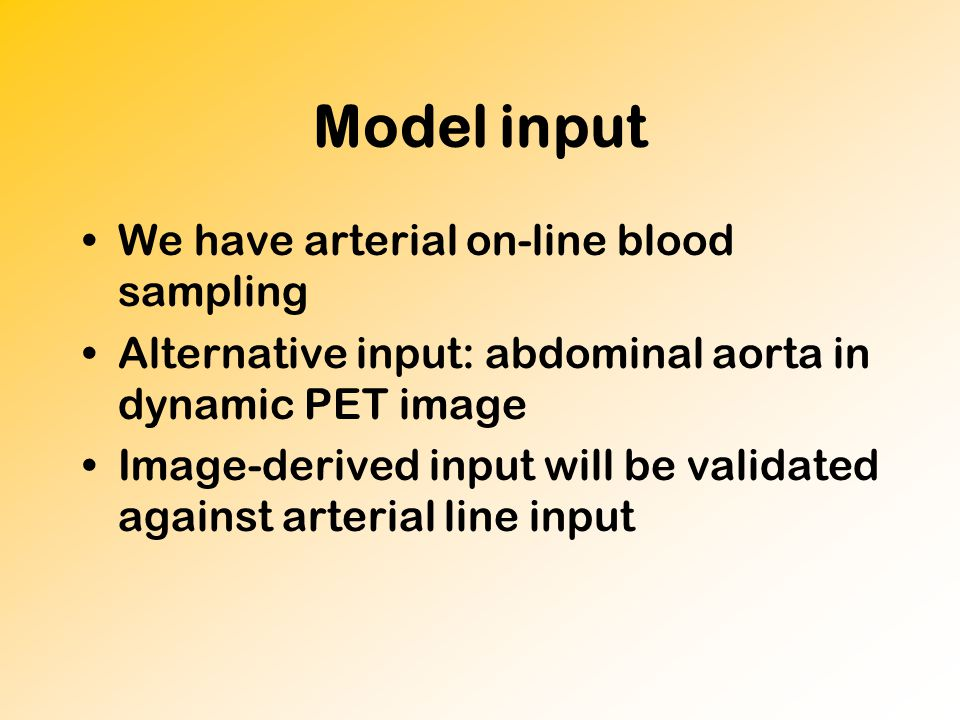 Model input We have arterial on-line blood sampling Alternative input: abdominal aorta in dynamic PET image Image-derived input will be validated against arterial line input