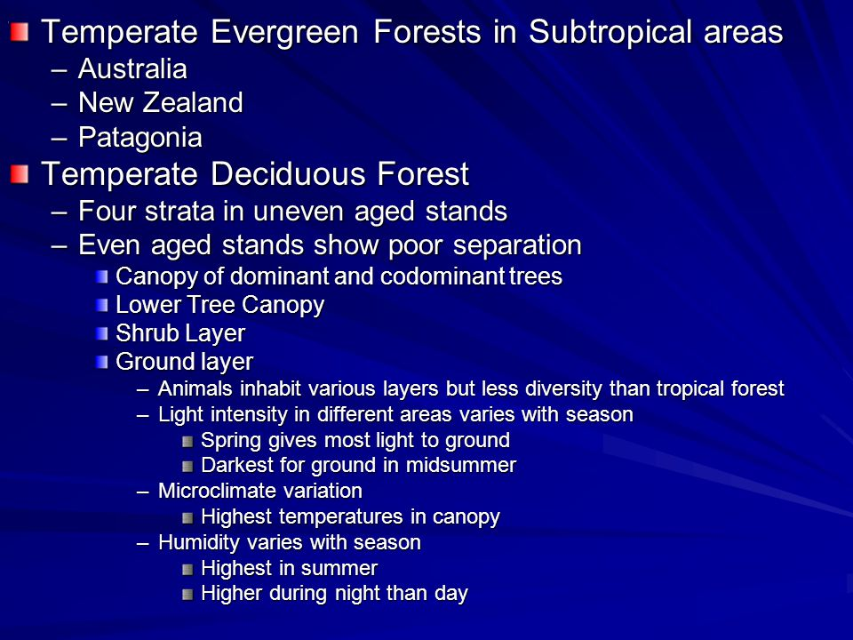 Temperate Evergreen Forests in Subtropical areas –Australia –New Zealand –Patagonia Temperate Deciduous Forest –Four strata in uneven aged stands –Even aged stands show poor separation Canopy of dominant and codominant trees Lower Tree Canopy Shrub Layer Ground layer –Animals inhabit various layers but less diversity than tropical forest –Light intensity in different areas varies with season Spring gives most light to ground Darkest for ground in midsummer –Microclimate variation Highest temperatures in canopy –Humidity varies with season Highest in summer Higher during night than day