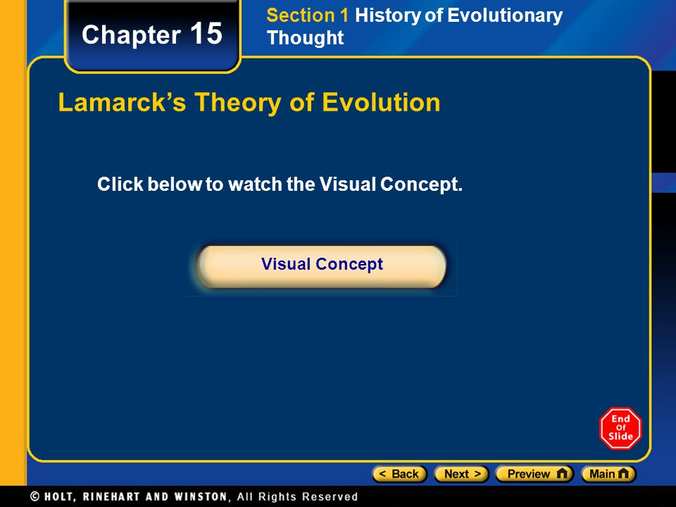 Chapter 15 Evidence of Whale Evolution