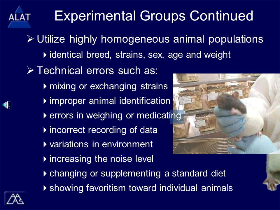 Experimental Groups Continued  Utilize highly homogeneous animal populations  identical breed, strains, sex, age and weight  Technical errors such as:  mixing or exchanging strains  improper animal identification  errors in weighing or medicating  incorrect recording of data  variations in environment  increasing the noise level  changing or supplementing a standard diet  showing favoritism toward individual animals