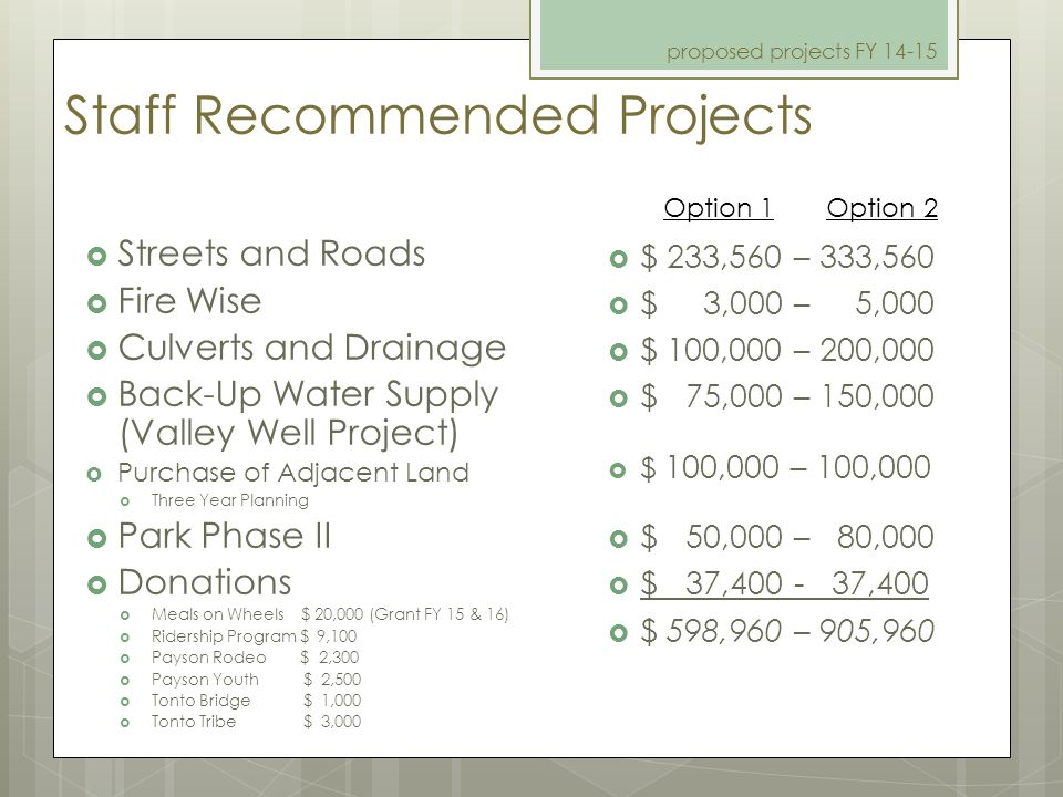 Staff Recommended Projects  Streets and Roads  Fire Wise  Culverts and Drainage  Back-Up Water Supply (Valley Well Project)  Purchase of Adjacent