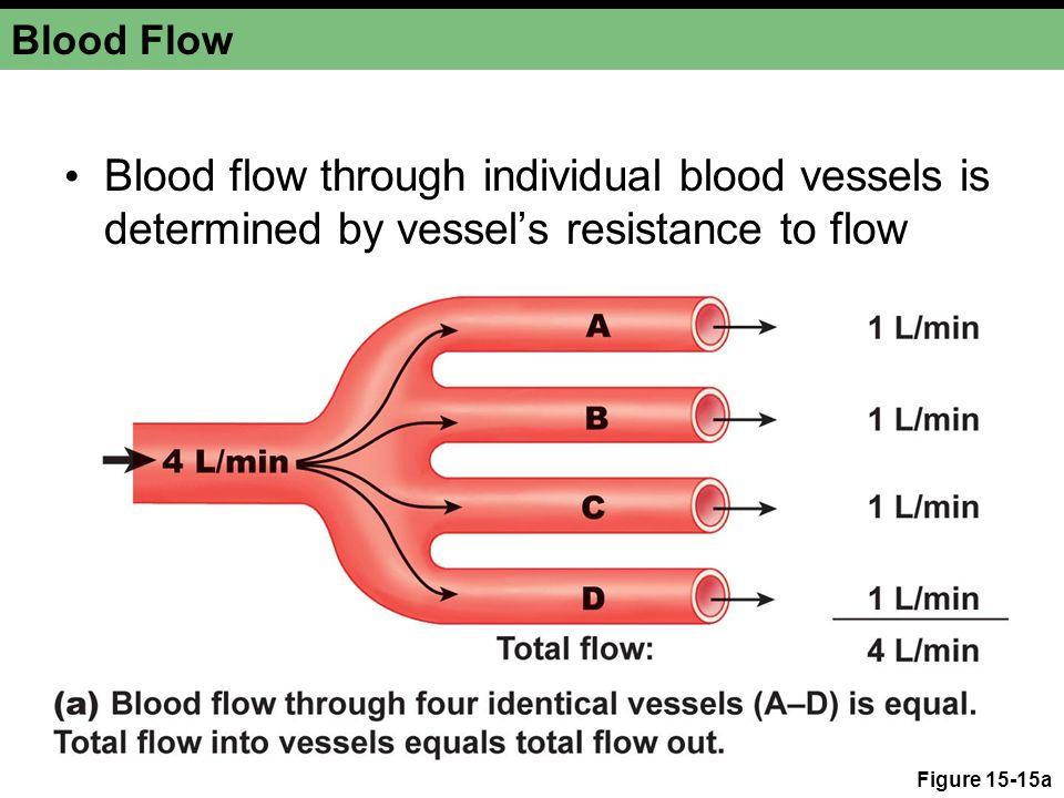 Blood Flow Flow  1/resistance Figure 15-15b