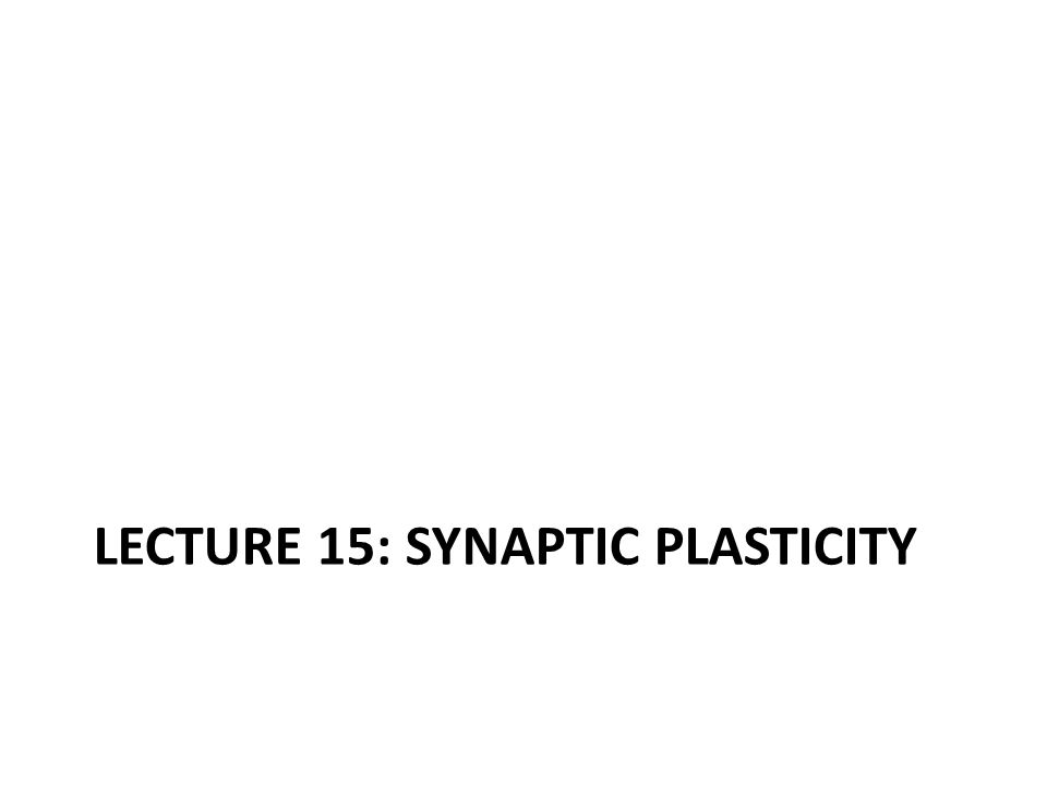 LECTURE 15: SYNAPTIC PLASTICITY