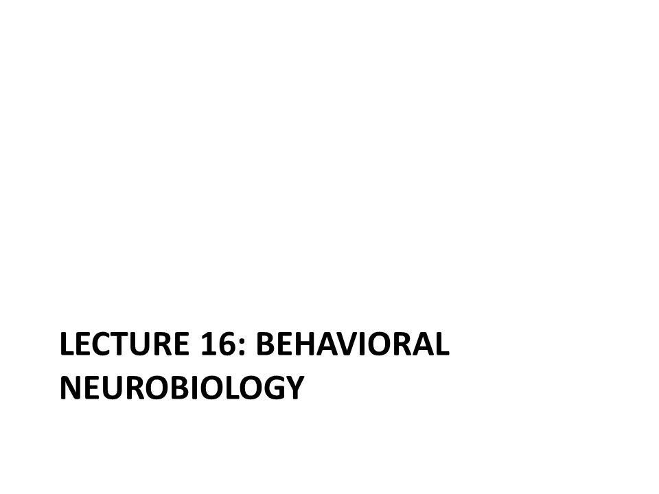 LECTURE 16: BEHAVIORAL NEUROBIOLOGY
