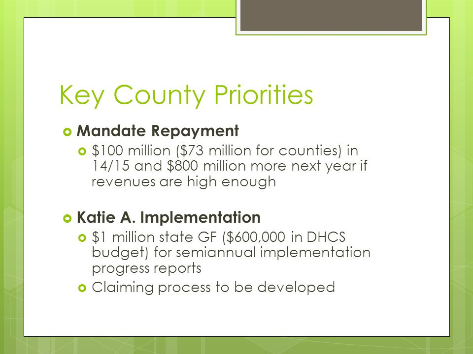 Key County Priorities  Mandate Repayment  $100 million ($73 million for counties) in 14/15 and $800 million more next year if revenues are high enough  Katie A.