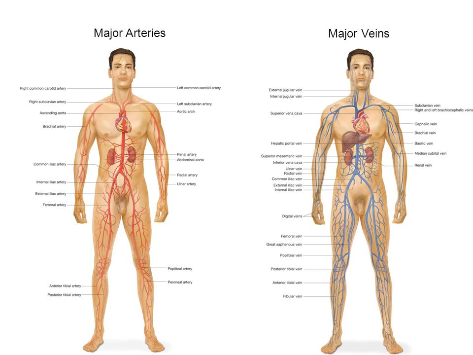 Angina Pectoris Chest pain/discomfort caused by ischemia of the myocardium Occurs when the oxygen demands of the heart exceed the available supply Common occurrence in people with CAD due to narrowing of the arteries Can also be caused by vasoconstriction or spasm of the coronary arterie
