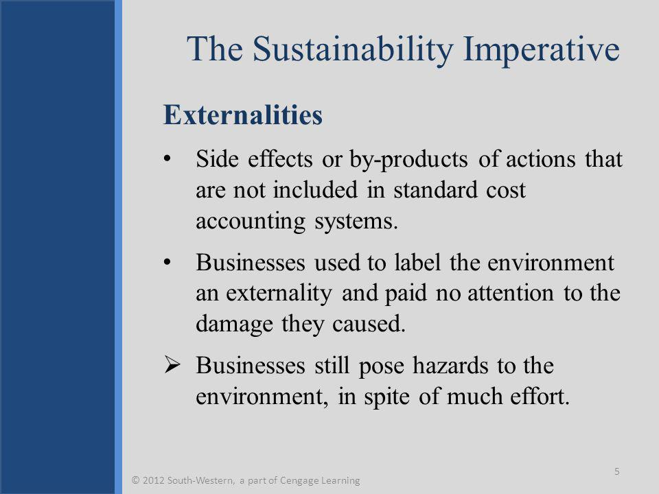 The Sustainability Imperative Externalities Side effects or by-products of actions that are not included in standard cost accounting systems.