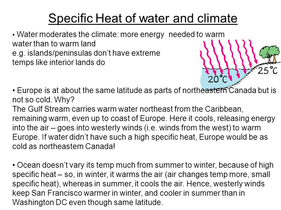 Specific Heat of water and climate Water moderates the climate: more energy needed to warm water than to warm land e.g.