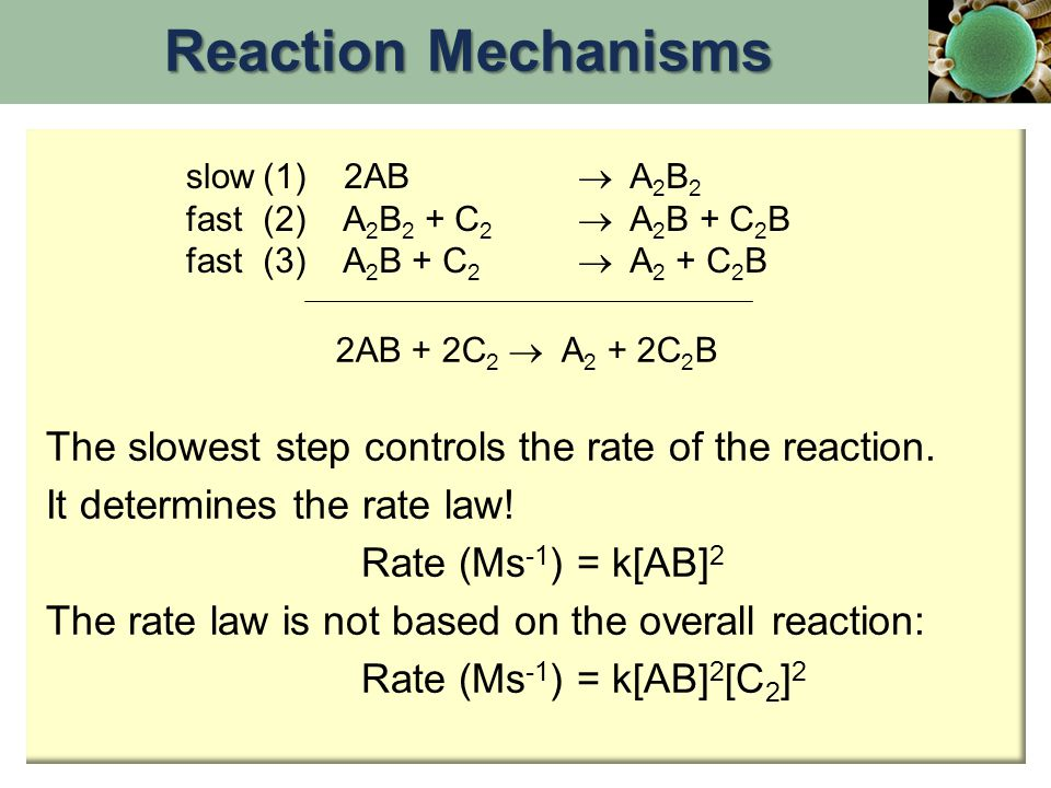 slow fast (1) 2AB  A 2 B 2 (2) A 2 B 2 + C 2  A 2 B + C 2 B (3) A 2 B + C 2  A 2 + C 2 B 2AB + 2C 2  A 2 + 2C 2 B The slowest step controls the ra